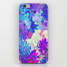 Winter Sunshine iPhone & iPod Skin