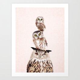 Stacked Owls on Blush Art Print