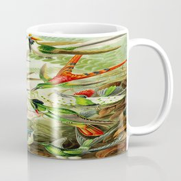 Kunstformen der Natur (Art Forms in Nature)a book of lithographic and halftones. Hummingbirds Coffee Mug