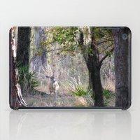 fairytale iPad Cases featuring Fairytale by Sara Evans