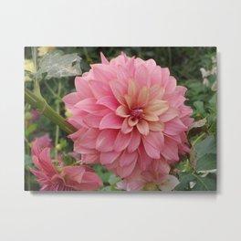 Flor de Alhambra  Metal Print