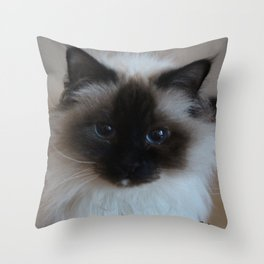 Lucy The Cat 1 Throw Pillow