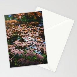 Momiji Shades Stationery Cards