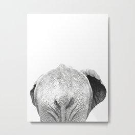 Black and white elephant animal jungle Metal Print