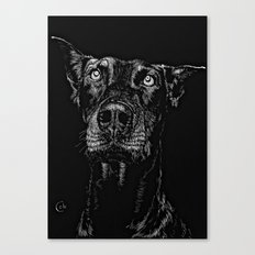 The Curious Expressions of Dogs Canvas Print