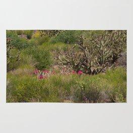 Painted Desert - VI Rug