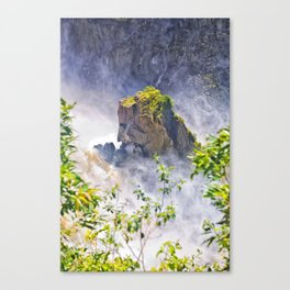 Rock in the falls Canvas Print