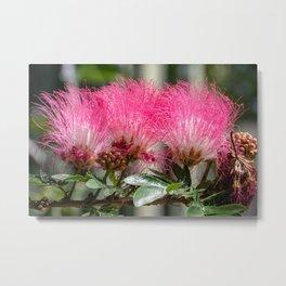 Pink Flower Burst Metal Print