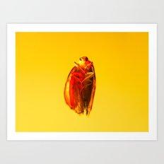 Bugged #14 Art Print