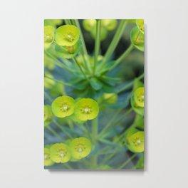 Little Green Flowers Metal Print