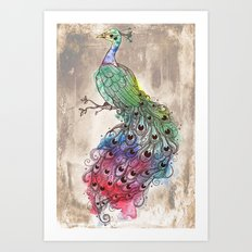 Grunge Peacock Art Print
