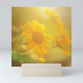 sunny evenings Mini Art Print
