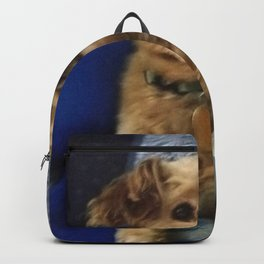 The Cute Pup Backpack