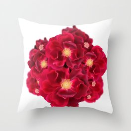 Floral Ink Throw Pillow
