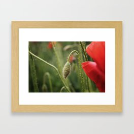 flower photography by Skyla Design Framed Art Print