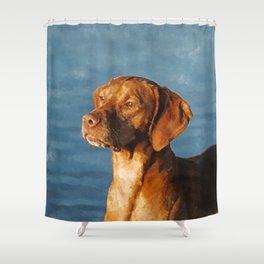 Vizsla dog - Hungarian hound Shower Curtain