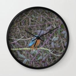 Kingfisher. Wall Clock