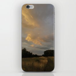 We Only Crave Reality iPhone Skin