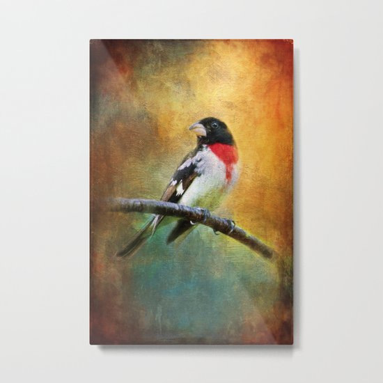 Rose-breasted Grosbeak ~ Ginkelmier Inspired Metal Print