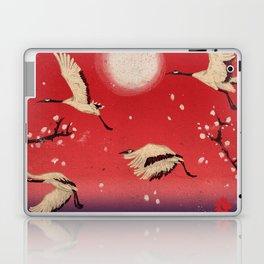 Durumi Laptop & iPad Skin