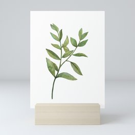 Green Plant Mini Art Print