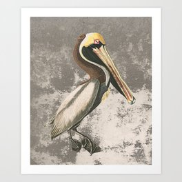 If anyone can, pelican Art Print