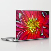 dahlia Laptop & iPad Skins featuring Dahlia by Christopher Richards