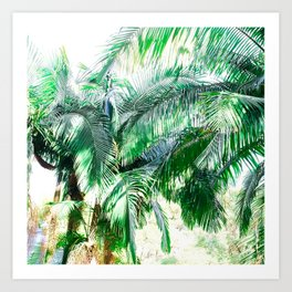 The wild shadow tropical palm tree green bright photography Art Print