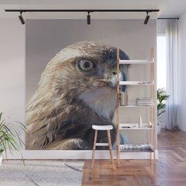 Watercolor Bird, Red-tailed Hawk 09, Keenesburg, Colorado, Flashing the Look! Wall Mural