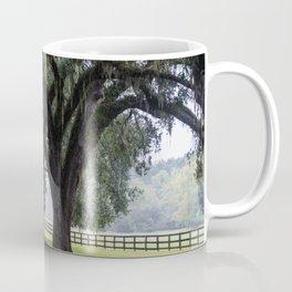 Tree Arch Drive Coffee Mug