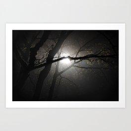 Tree in the fog at night Art Print