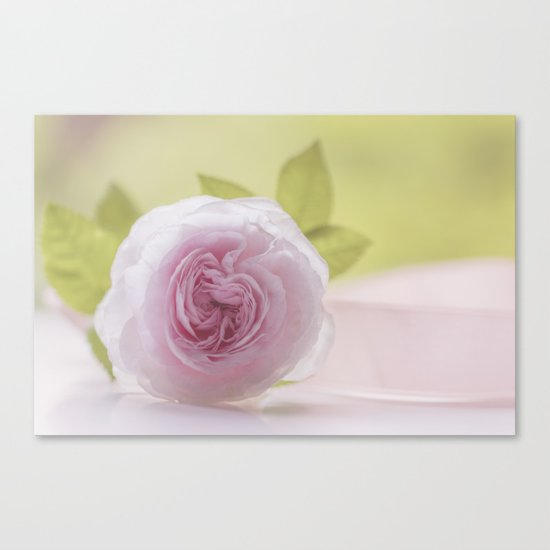 Roses in LOVE I - Rose Flower Floral  pink Canvas Print