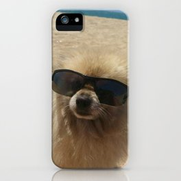 Dog At Beach iPhone Case