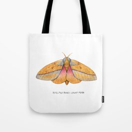 Bisected Honey Locust Moth (Sphingicampa bisecta) Tote Bag