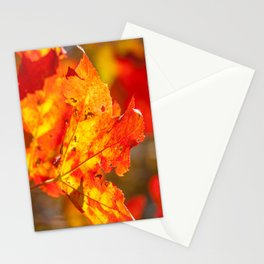 Coos County Autumn #29 Stationery Cards