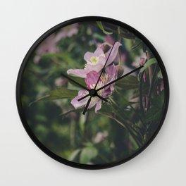 Makro_Clematis_6 Wall Clock