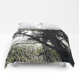 Grass Glowing Beneath A Tree Comforters