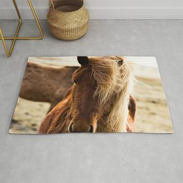 A Pony in Iceland Rug