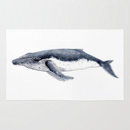 Humpback whale (Megaptera novaeangliae) Rug