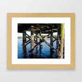 Under the Dock Framed Art Print