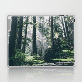 Rays Laptop & iPad Skin
