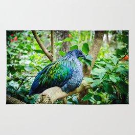 Nicobar Pigeon Rug