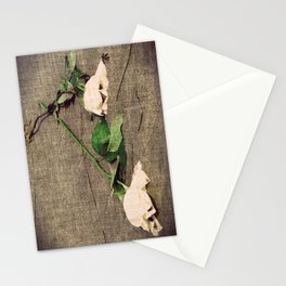 Roses on the Beach Stationery Cards