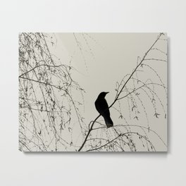 Crow in the Willow - Graphic Birds Series, Plain - Modern Home Decor Metal Print