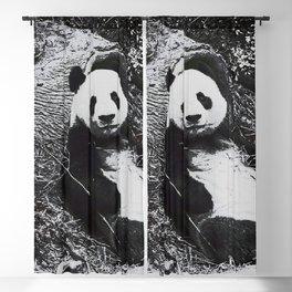 Urban Pop Art Panda Blackout Curtain