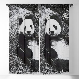 Urban Pop Art Panda Blackout Curtain