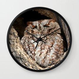 Red morph screech owl Wall Clock