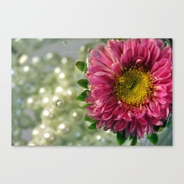 Sunken Treasure Canvas Print