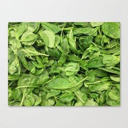 Spinach Canvas Print