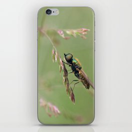 Green Soldier Fly iPhone Skin